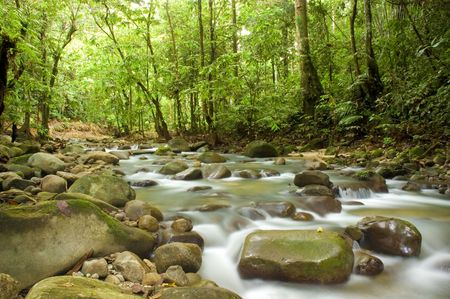 green waterfall Stock Photo - 2796141