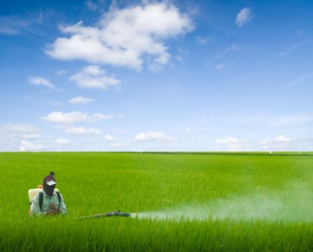 pesticides: farmer spraying pesticides Stock Photo