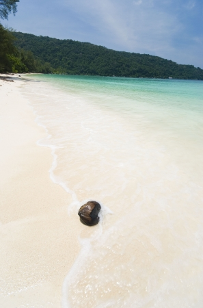 a blank beach with a coconut shell  photo