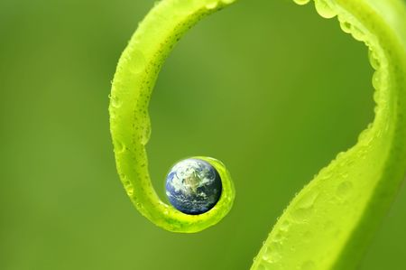 concept photo of earth on green nature, Earth map by courtesy of visibleearth.nasa.gov 스톡 콘텐츠