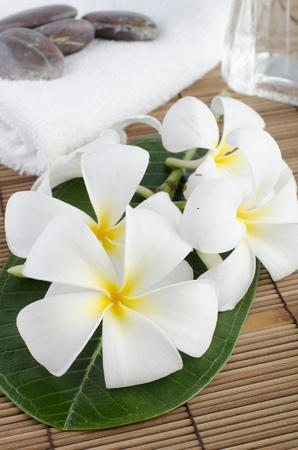 frangpani tropical spa photo