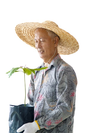 chinese hat: old asian malaysian farmer isolated on white