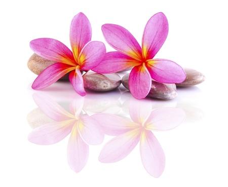 massaggio: pietre zen con frangipani Archivio Fotografico