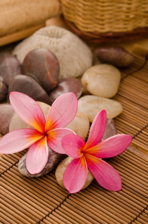 tropical spa with frangipani flowers arrangement and rocks  photo