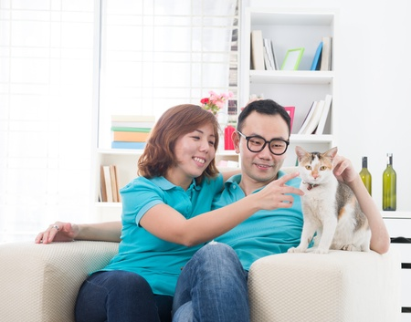 south asian ethnicity: asian couple with cat ,  chinese south east asian ethnicity