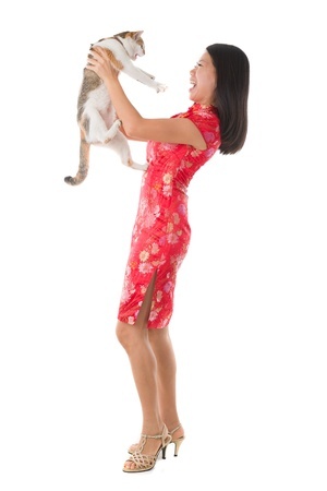 oriental white cat: chinese new year girl with a cat  Stock Photo