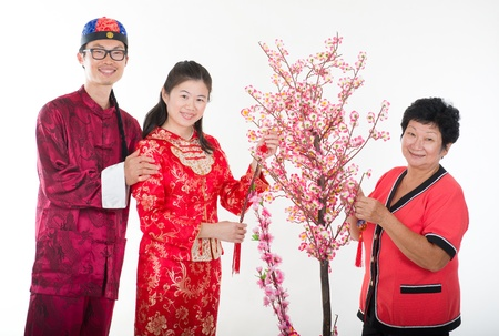 chinese new year family decorating willow tree photo