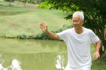 chinese senior performing tai chi on green outdoor photo