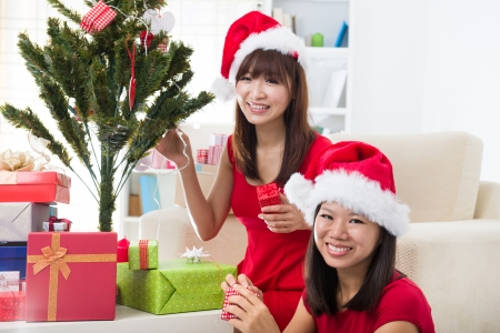 chinese christmas celebration among friends with home background Stock Photo - 18843756