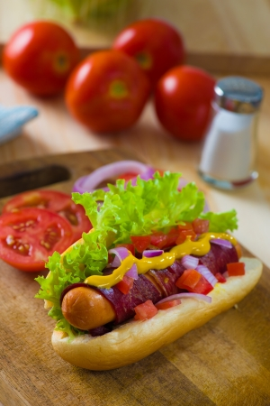 hot dog fast food with plenty of raw ingredients on the background photo