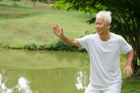 tai chi: asian senior male workout in the park
