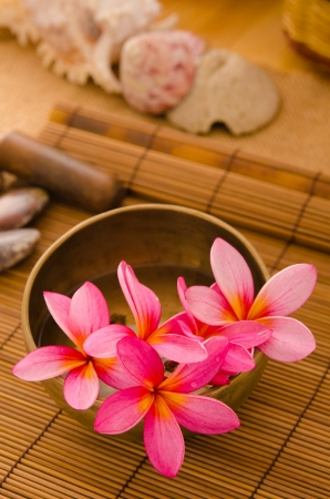 Balinese Spa setting. Low lighting, suitable for spa related theme. Stock Photo - 22639429