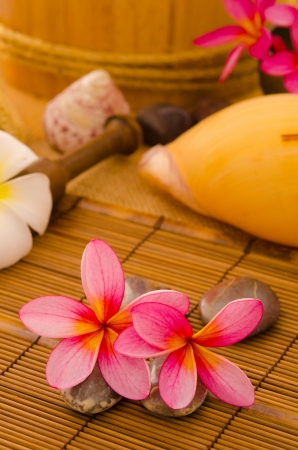 Balinese Spa setting. Low lighting, suitable for spa related theme. Stock Photo - 22639434