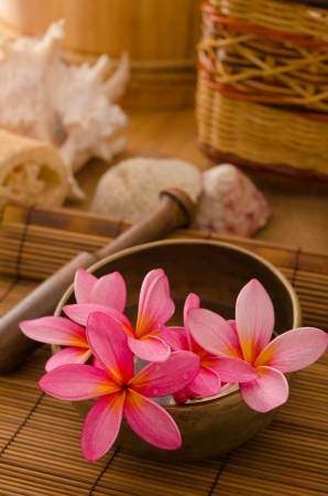 Balinese Spa setting. Low lighting, suitable for spa related theme. Stock Photo - 22639662