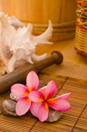 Balinese Spa setting. Low lighting, suitable for spa related theme. Stock Photo - 22639667