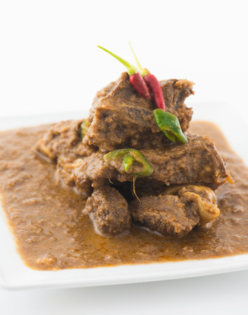 mutton korma curry , indian food photo