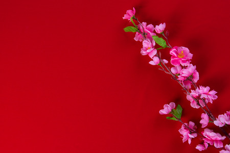 red packet: Plum flowers with Red Packet copyspace for chinese new year Stock Photo