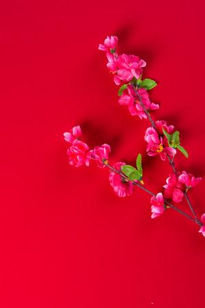 prosper: chinese new year decorations Stock Photo
