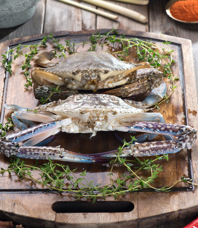 blue swimmer crab: raw crabs with spices for cooking preparation