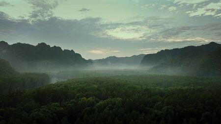 Sunrise in the rainforest.