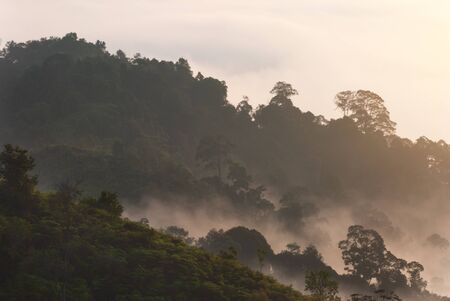 Sunrise of Panorama Hill, Sungai Lembing