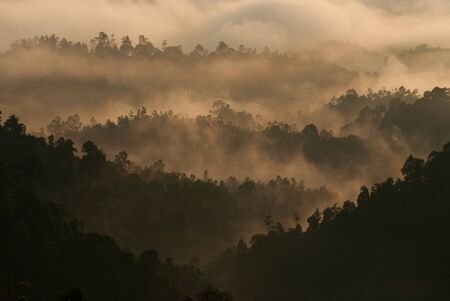 Sunrise of Rainforest, Sungai Lembing
