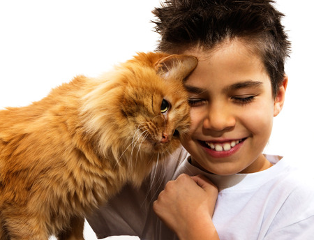 red animal: A young boy hugging his orange cat