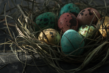 Quail eggs. Painted eggs for Easter. Colorful still lifes.