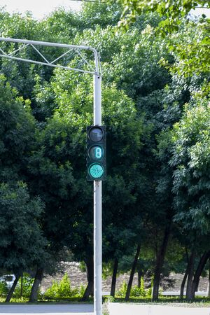 A green traffic light. Street light with stopwatch for drivers and pedestrians. A traffic light with a stopwatch. Road sign. Foto de archivo