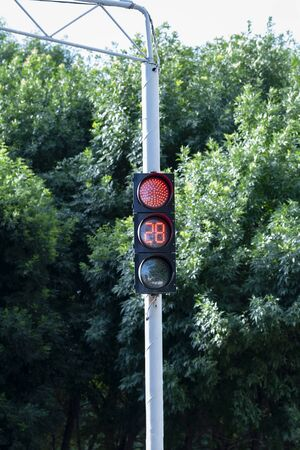 A red traffic light. Street light with stopwatch for drivers and pedestrians. A traffic light with a stopwatch. Road sign.