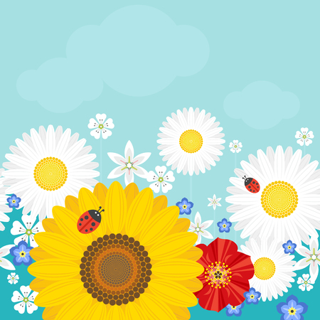 Summer background with flowers and ladybirds. Positive vector illustration.