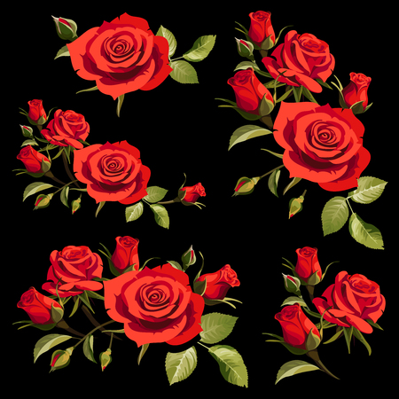 Illustration with Red Roses on Black Background. Positive Spring Illustrations.