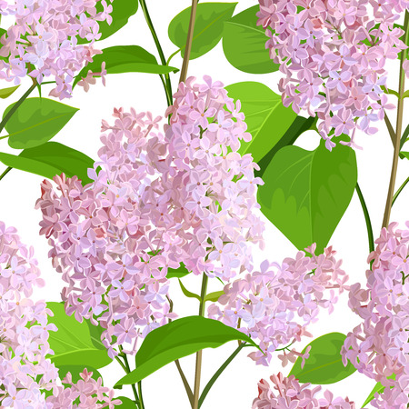 Spring Flowers Lilac on White Background Seamless Pattern.
