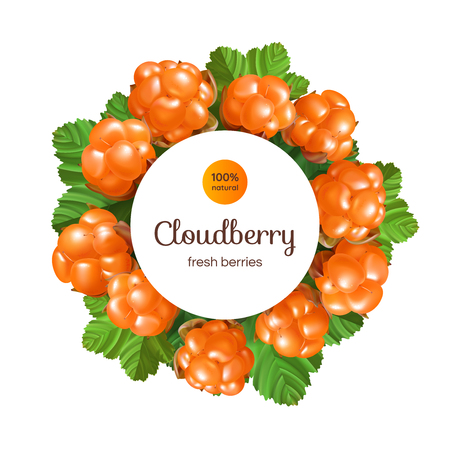 Banner with Cloud berry on white background.