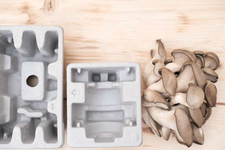 mushroom packaging solution, earth-friendly, home compostable packaging biodegradable and renewable material fully natural composite environmentally friendly alternative to plastic. up-cycling.
