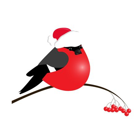bullfinch isolated on white background. Sample of poster, party holiday invitation, festive banner, card. Vector cartoon llustration.