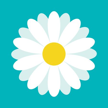 White daisy chamomile. Cute flower plant collection. Love card. Camomile icon Growing concept. Flat design. Green background. Isolated. Vector illustration Çizim