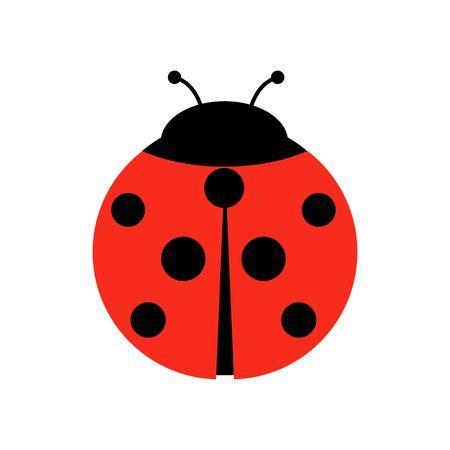Ilustración gráfica de vector de mariquita o mariquita, aislado. Lindo diseño plano simple de escarabajo negro y rojo.
