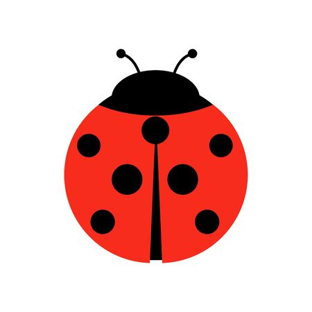 Ladybug or ladybird vector graphic illustration, isolated. Cute simple flat design of black and red lady beetle. Banque d'images - 115342636