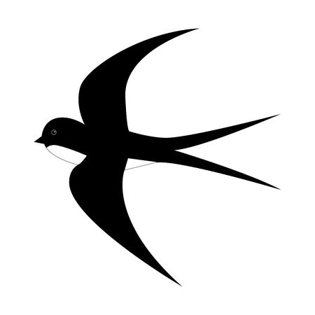 Spring cartoon black and white swallow in motion isolated on white background. Bird spread wings and fly vector illustration. Symbol of beginning of spring and warm sunny weather.