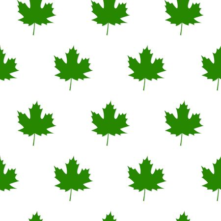 Autumn Set of Green Maple Leaves on White Background, Vector Version Vectores