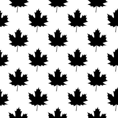 Autumn leave. Autumn. Maple leaves on white background. Black and white pattern. 向量圖像