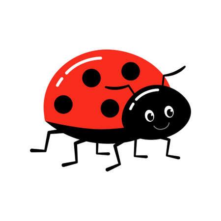 Ladybug or ladybird vector graphic illustration, isolated.
