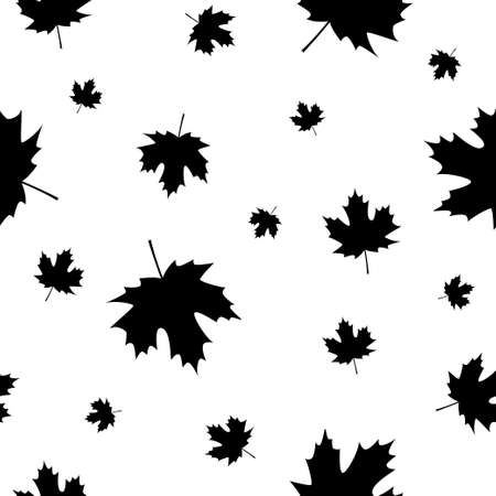 Autumn leave. Autumn. Maple leaves on white background. Black and white seamless pattern.