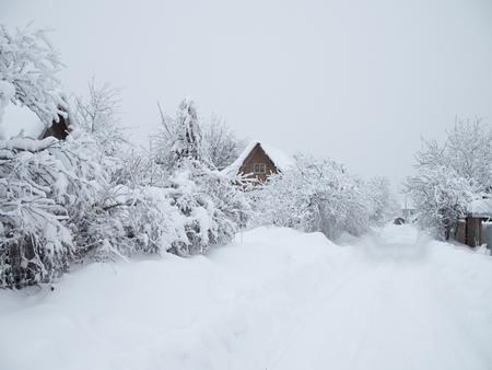 Snow-white road to the village.