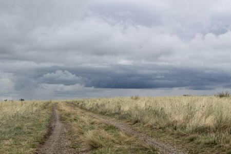 steppe road going into the stormy sky.