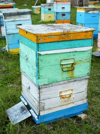 old two-level beehive on the apiary on a summer day.