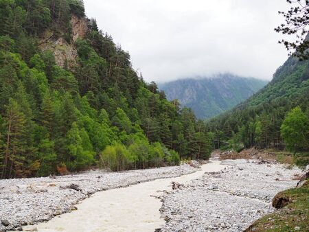 beautiful mountain landscape with dense coniferous forest rocky slopes and mountain shallow river. 版權商用圖片