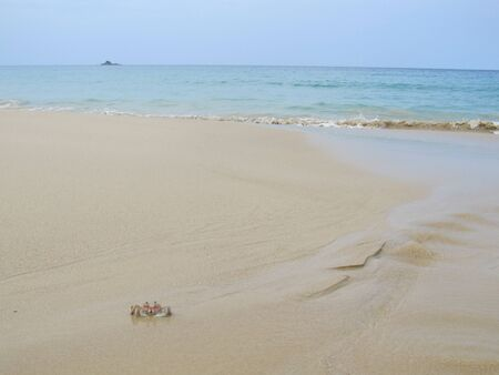 beautiful landscape with views of the deserted beach on which only crabs are crawling.