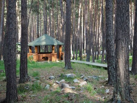 Small wooden cabin house near pine forest. Exterior design.
